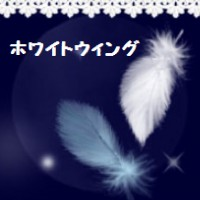 ホワイトウィング(小樽)