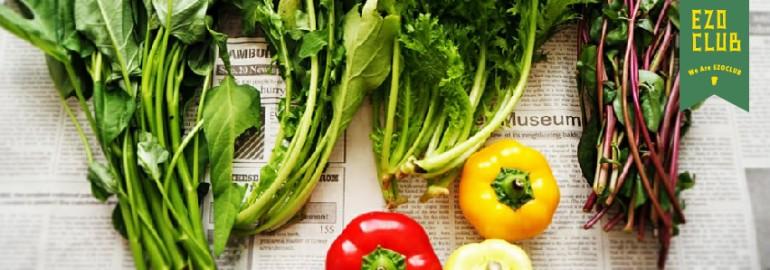 北海道野菜を盛りあげ隊